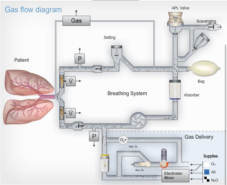 anesthesia gas machine