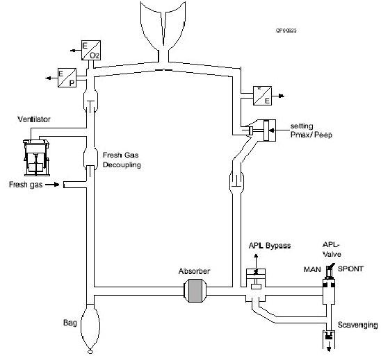 gas valve diagram payne gas furnace gas valve wiring diagram anesthesia gas machine ventilators #3